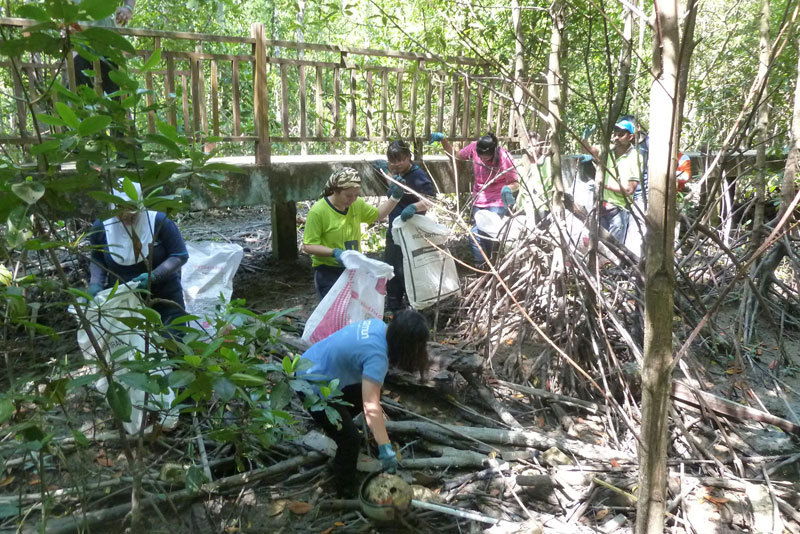 Hartalega Contributes to Mangrove Preservation Efforts